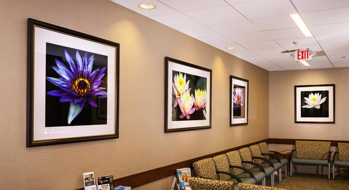 Art For Commercial & Office Space
